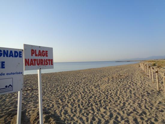 rencontre plage torreilles
